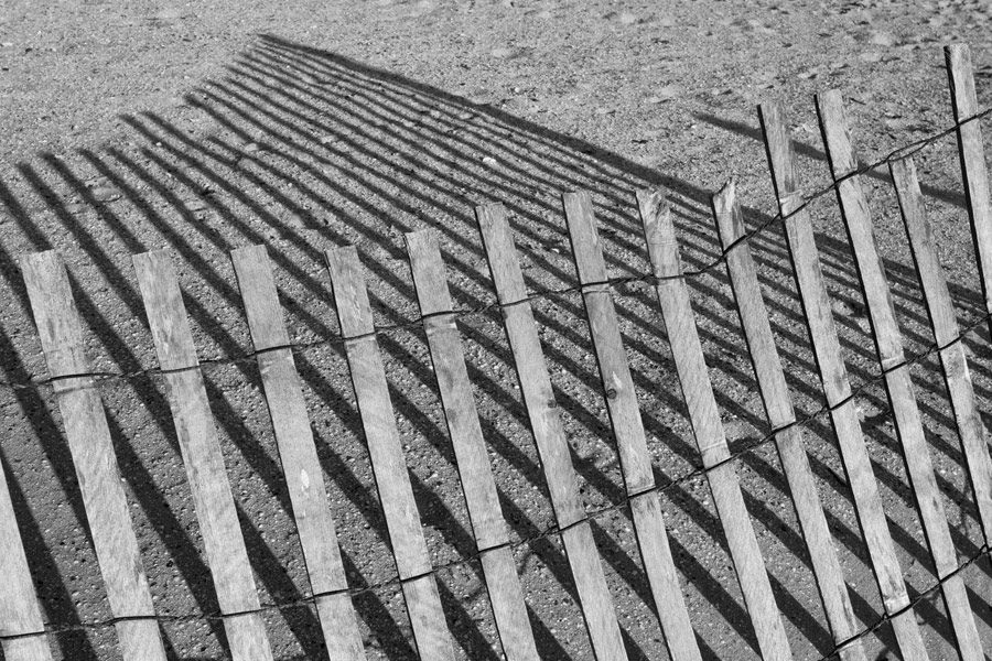 Fence on Beach Black and White